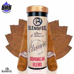 Extracto Orgánico Dominican Blend Classic 10ml by Blendfeel